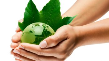 planète terre mains écologie / green earth globe in hands